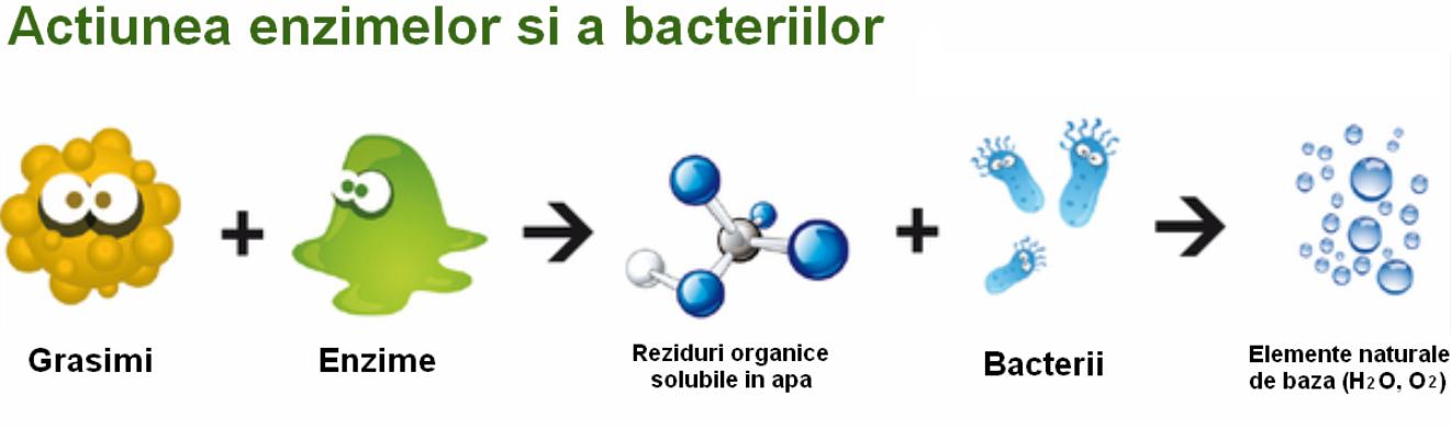 detergenti bio